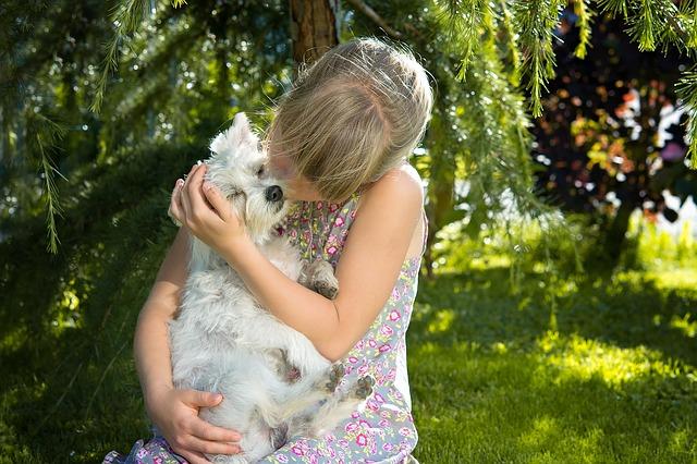 gyerek - kutya - szeretet