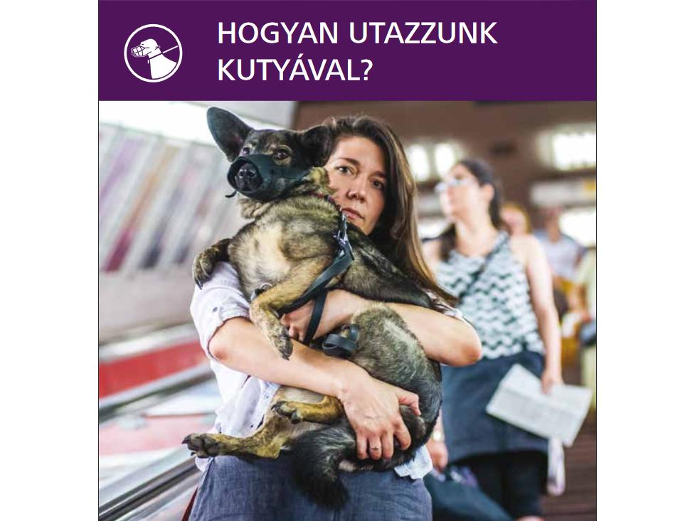 kutya utazása buszon, villamoson, metrón