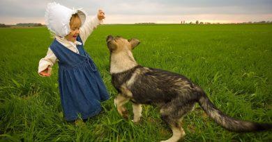 kutya - gyerek viszony