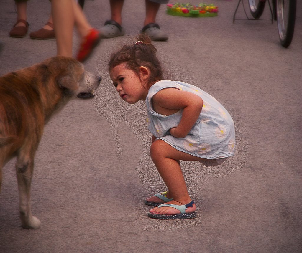 gyerek ismerje fel a kutya jelzéseit