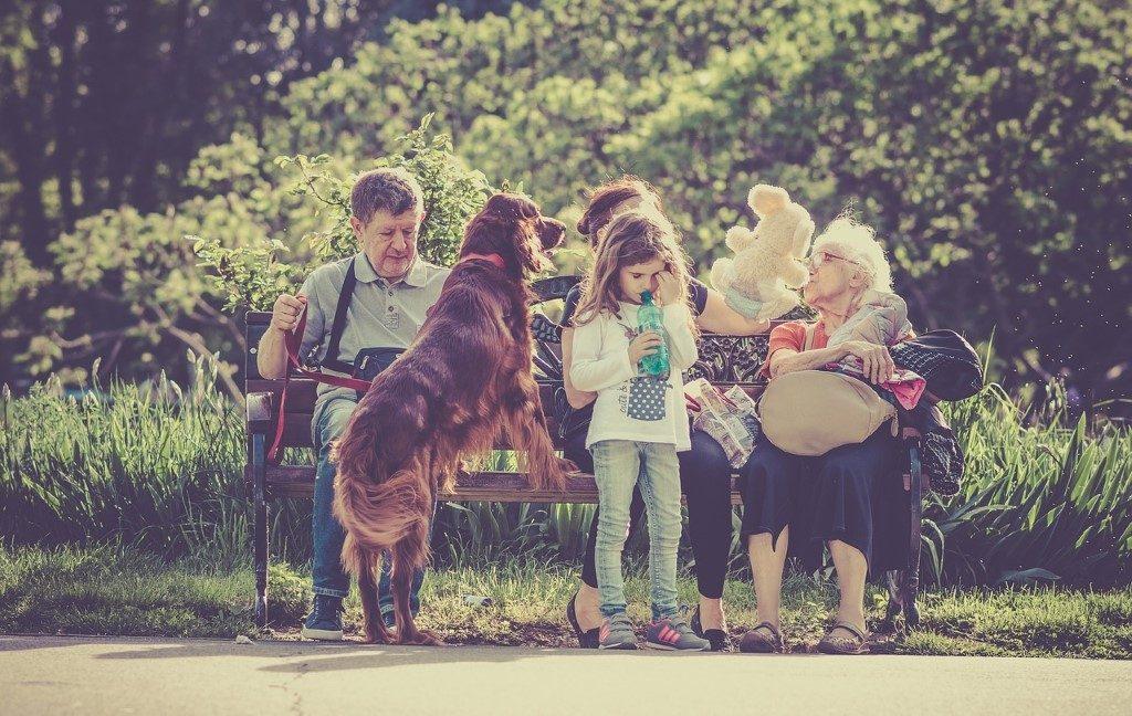 boldog család kutyával